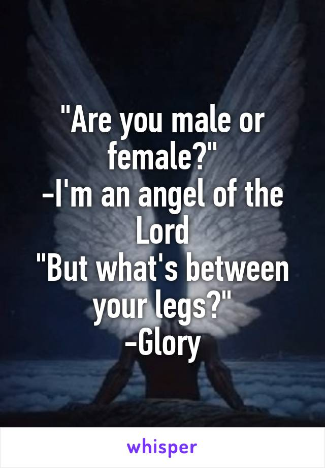 """""""Are you male or female?"""" -I'm an angel of the Lord """"But what's between your legs?"""" -Glory"""