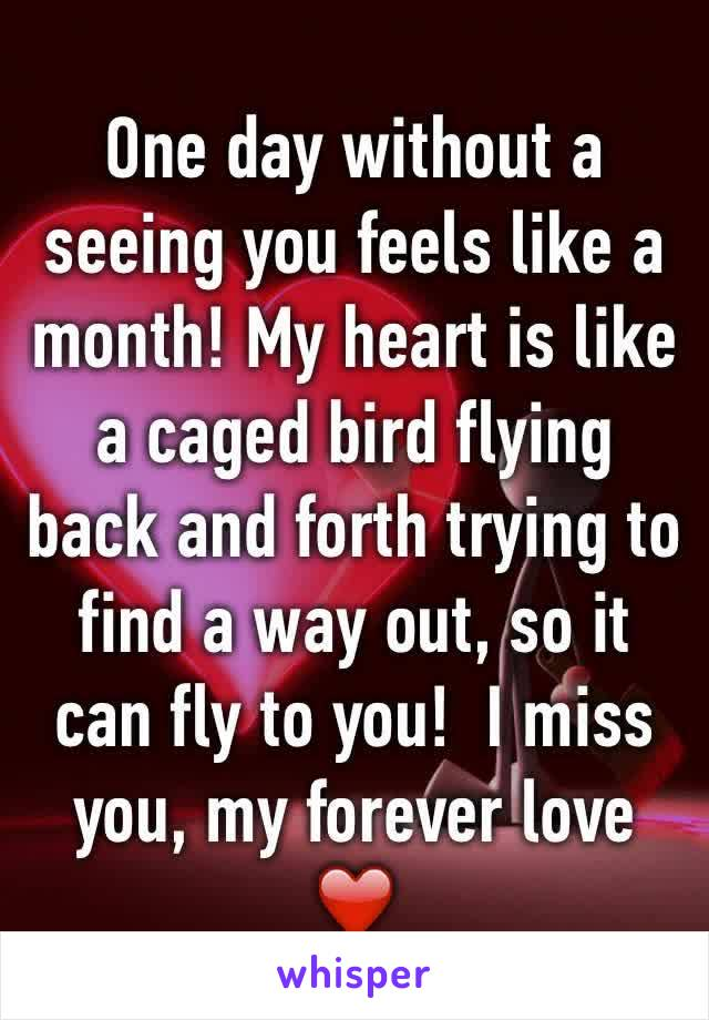 One day without a  seeing you feels like a month! My heart is like a caged bird flying back and forth trying to find a way out, so it can fly to you!  I miss you, my forever love ❤️