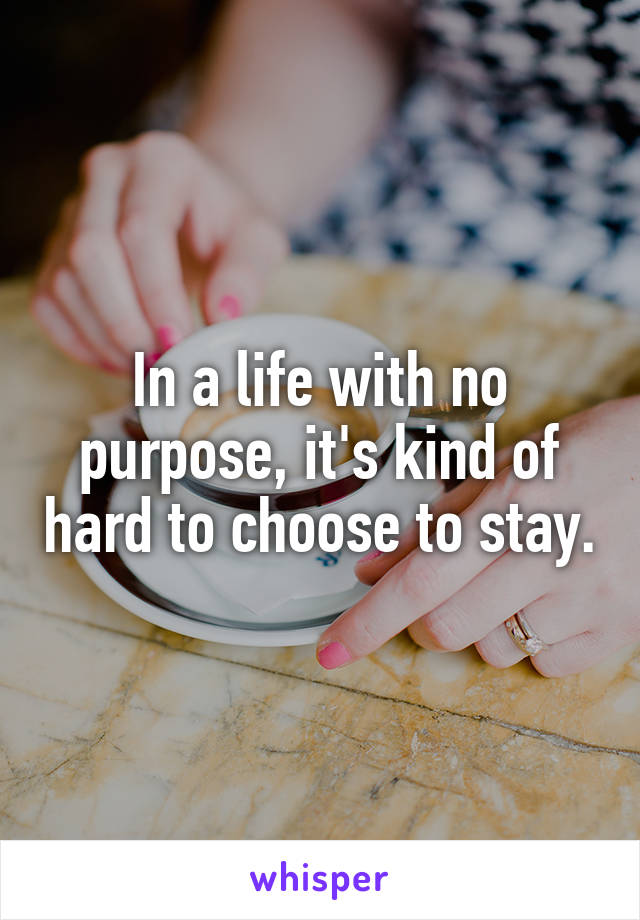 In a life with no purpose, it's kind of hard to choose to stay.