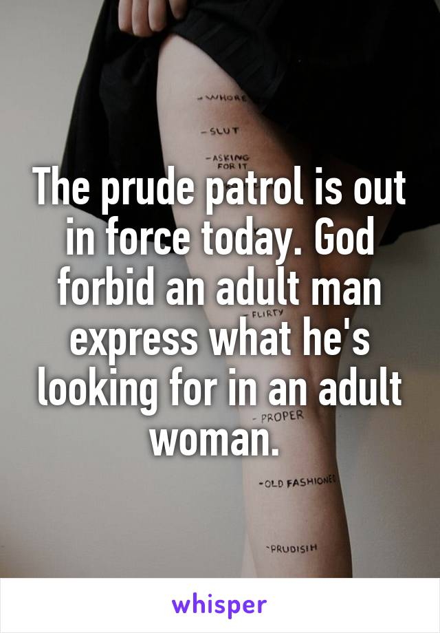 The prude patrol is out in force today. God forbid an adult man express what he's looking for in an adult woman.