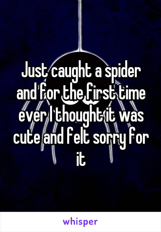 Just caught a spider and for the first time ever I thought it was cute and felt sorry for it