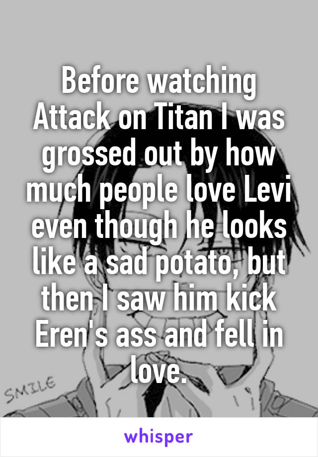 Before watching Attack on Titan I was grossed out by how much people love Levi even though he looks like a sad potato, but then I saw him kick Eren's ass and fell in love.
