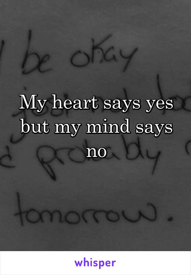 My heart says yes but my mind says no