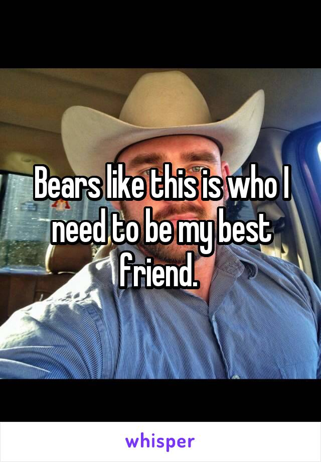 Bears like this is who I need to be my best friend.
