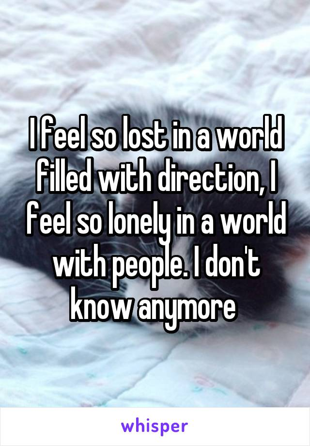 I feel so lost in a world filled with direction, I feel so lonely in a world with people. I don't know anymore