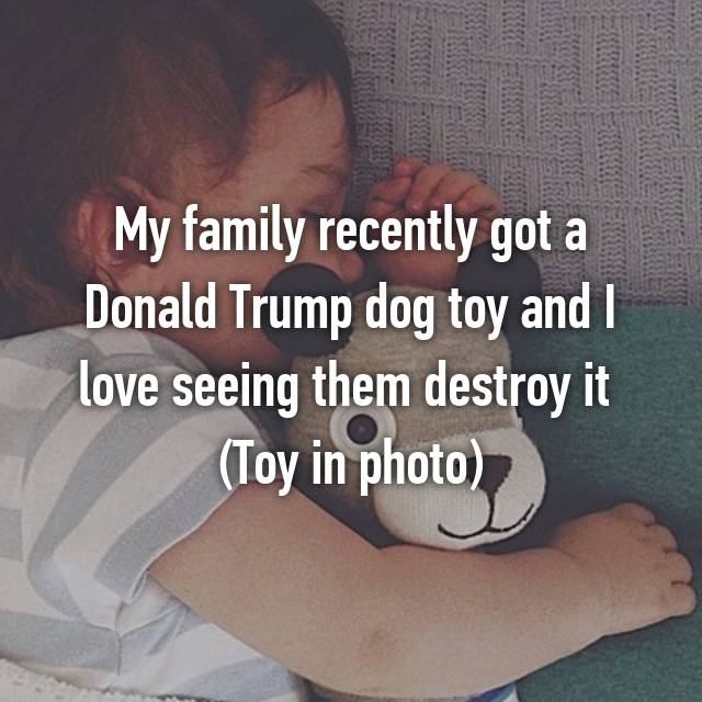My family recently got a Donald Trump dog toy and I love seeing them destroy it 😊 (Toy in photo)