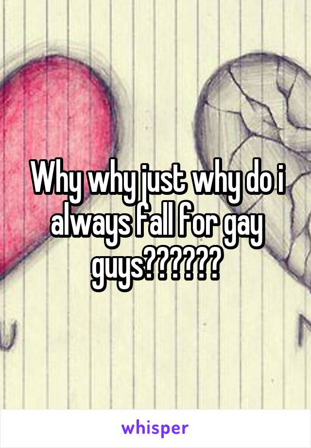 Why why just why do i always fall for gay guys??????