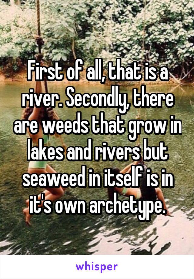river archetype