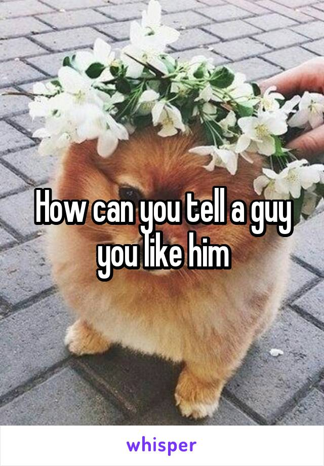 How can you tell a guy you like him