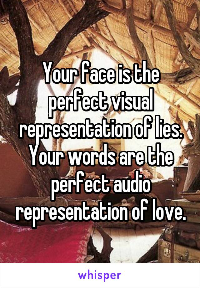 Your face is the perfect visual representation of lies. Your words are the perfect audio representation of love.