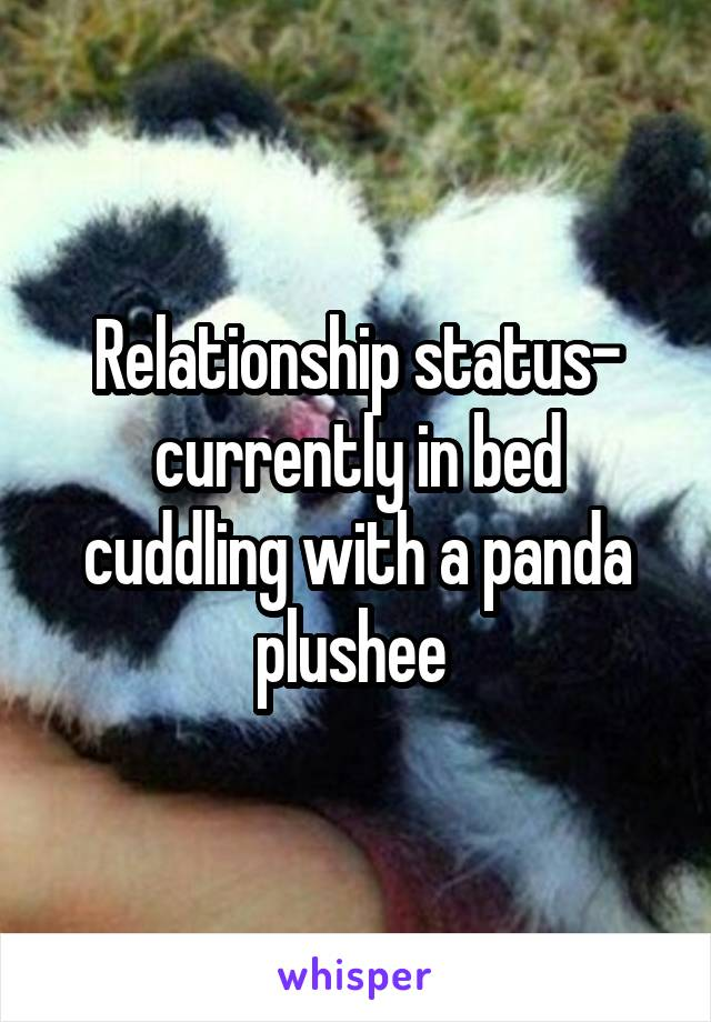 Relationship status- currently in bed cuddling with a panda plushee