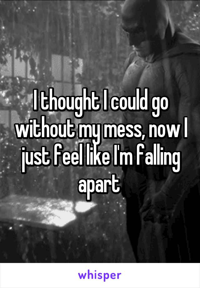 I thought I could go without my mess, now I just feel like I'm falling apart