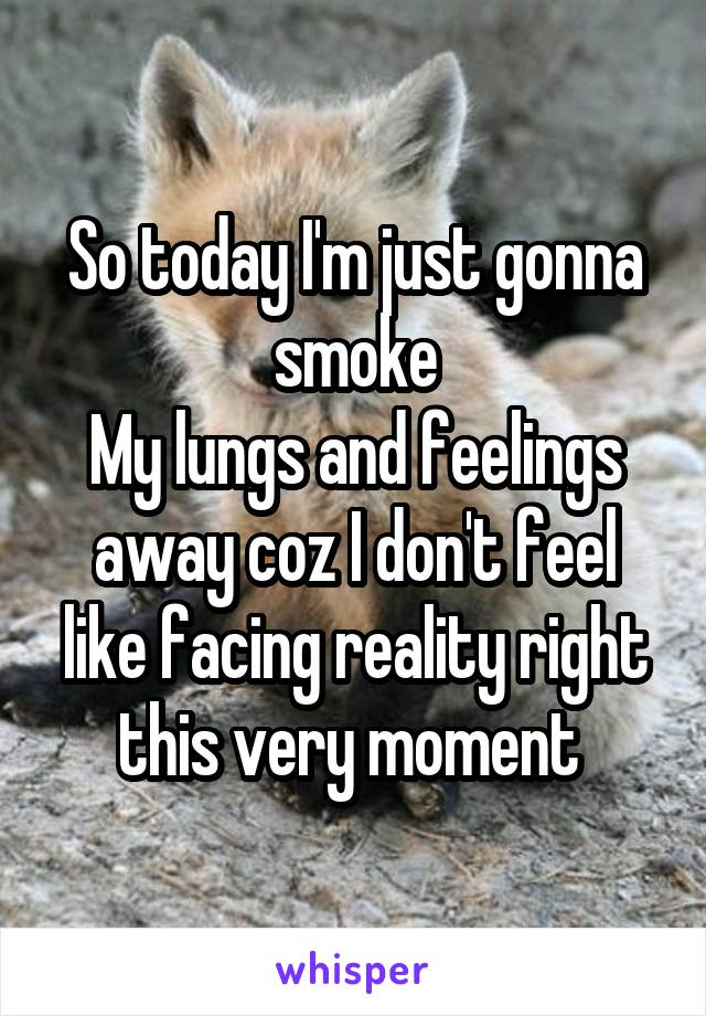 So today I'm just gonna smoke My lungs and feelings away coz I don't feel like facing reality right this very moment