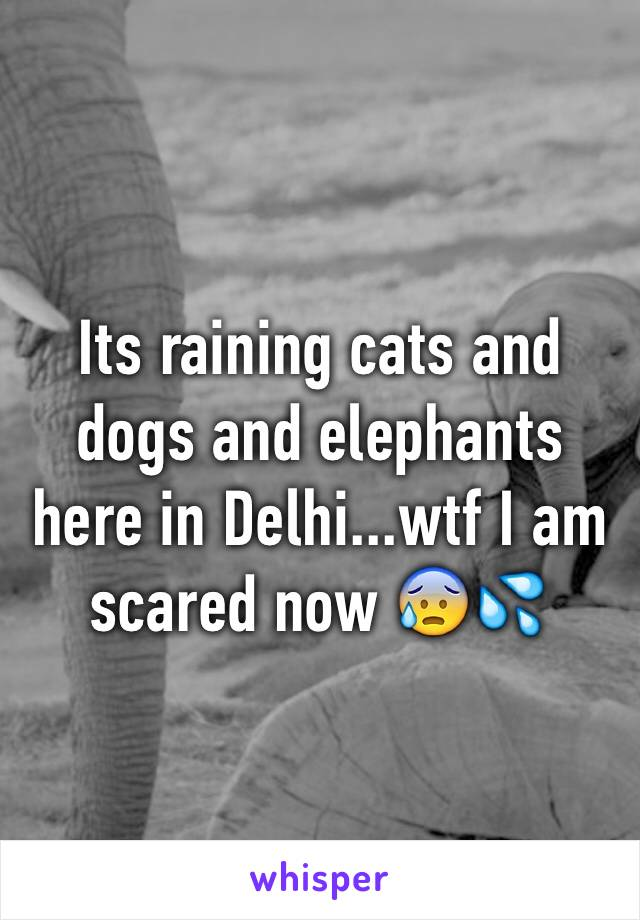 Its raining cats and dogs and elephants here in Delhi...wtf I am scared now 😰💦