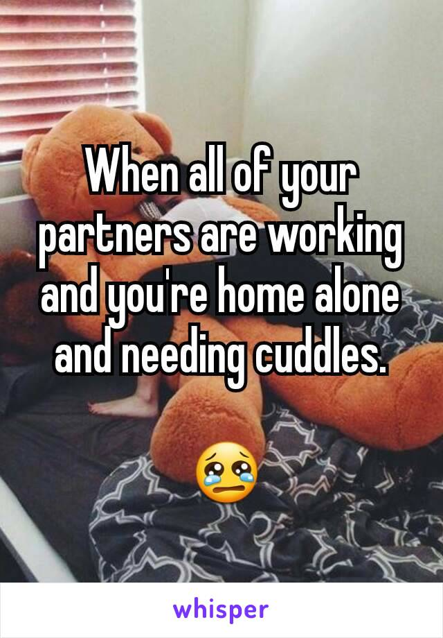 When all of your partners are working and you're home alone and needing cuddles.   😢