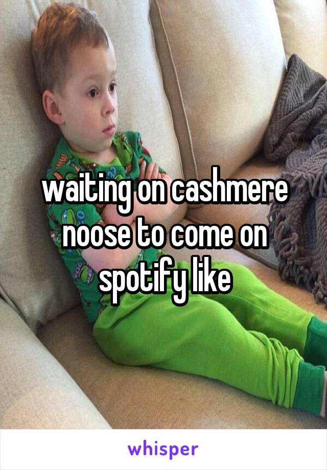 waiting on cashmere noose to come on spotify like