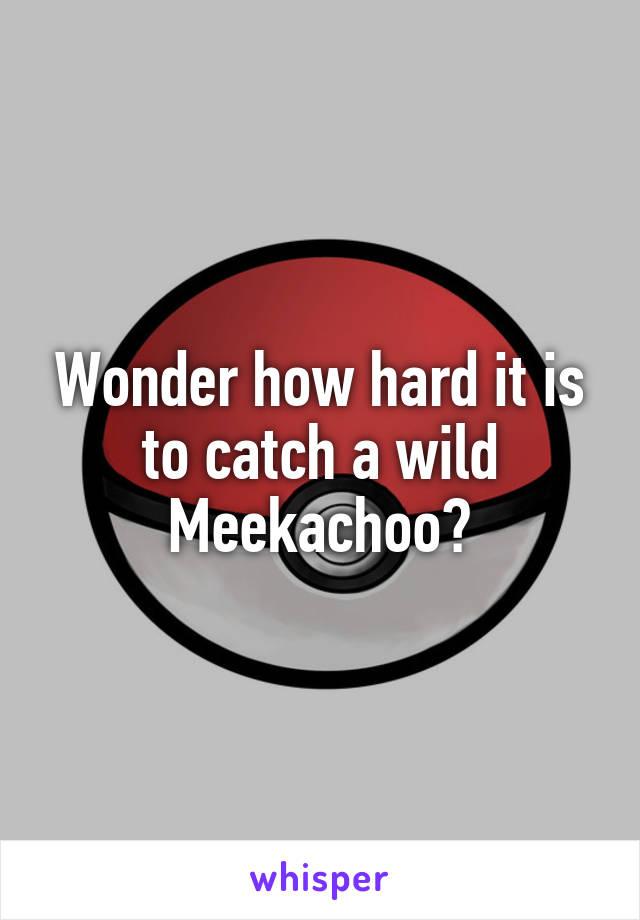 Wonder how hard it is to catch a wild Meekachoo?
