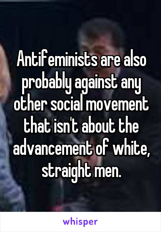 Antifeminists are also probably against any other social movement that isn't about the advancement of white, straight men.