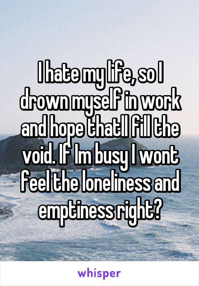 I hate my life, so I drown myself in work and hope thatll fill the void. If Im busy I wont feel the loneliness and emptiness right?