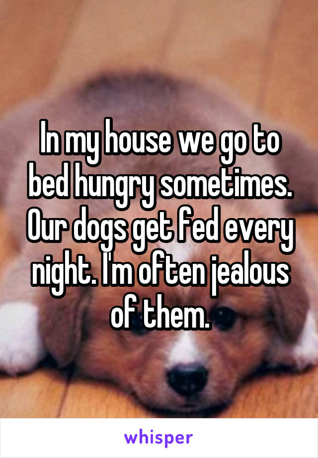 In my house we go to bed hungry sometimes. Our dogs get fed every night. I'm often jealous of them.