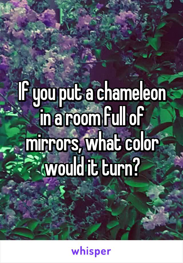 If you put a chameleon in a room full of mirrors, what color would it turn?