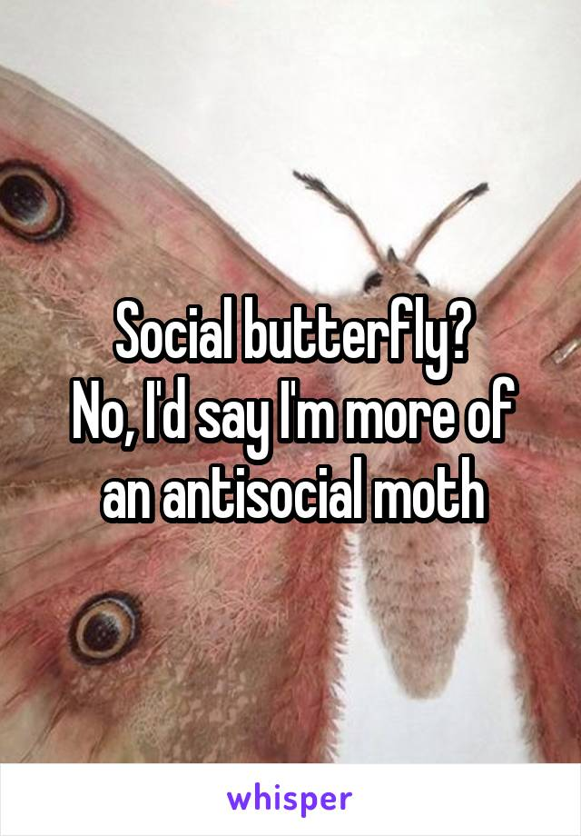 Social butterfly? No, I'd say I'm more of an antisocial moth