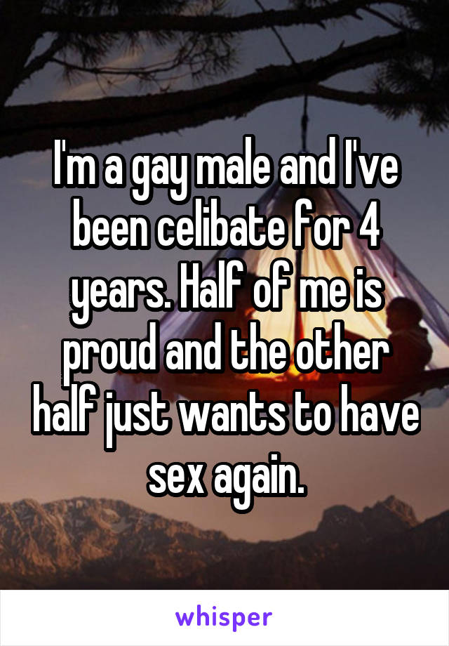 I'm a gay male and I've been celibate for 4 years. Half of me is proud and the other half just wants to have sex again.
