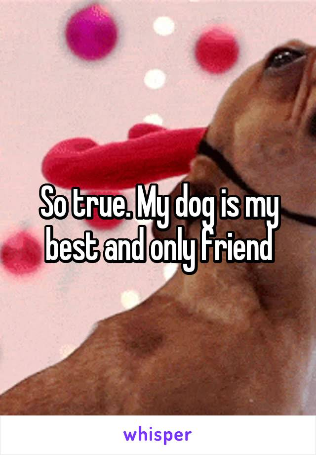So true. My dog is my best and only friend