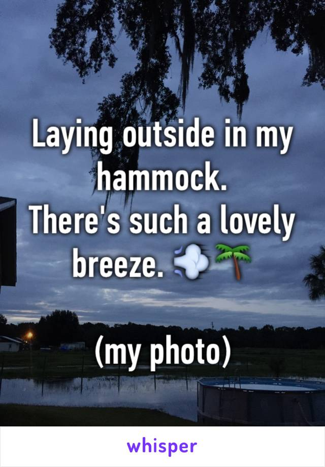 Laying outside in my hammock. There's such a lovely breeze. 💨🌴  (my photo)