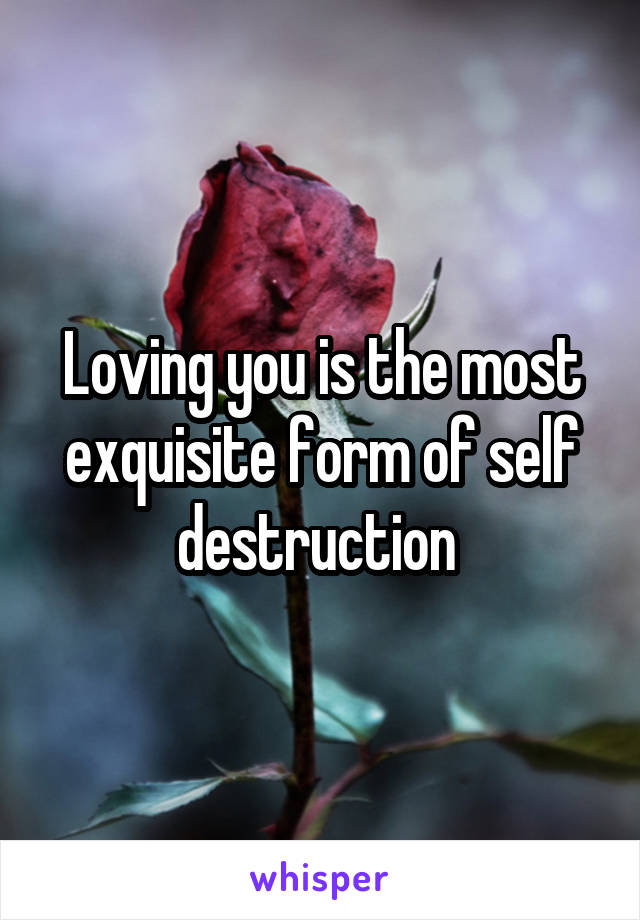 Loving you is the most exquisite form of self destruction