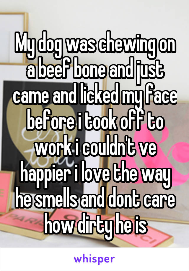 My dog was chewing on a beef bone and just came and licked my face before i took off to work i couldn't ve happier i love the way he smells and dont care how dirty he is