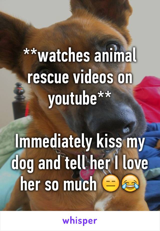 **watches animal rescue videos on youtube**  Immediately kiss my dog and tell her I love her so much 😑😂