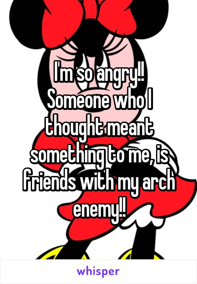 I'm so angry!! Someone who I thought meant something to me, is friends with my arch enemy!!