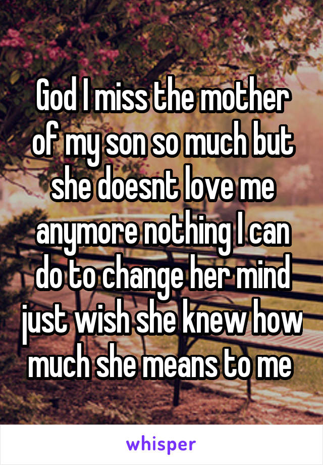 God I miss the mother of my son so much but she doesnt love me anymore nothing I can do to change her mind just wish she knew how much she means to me