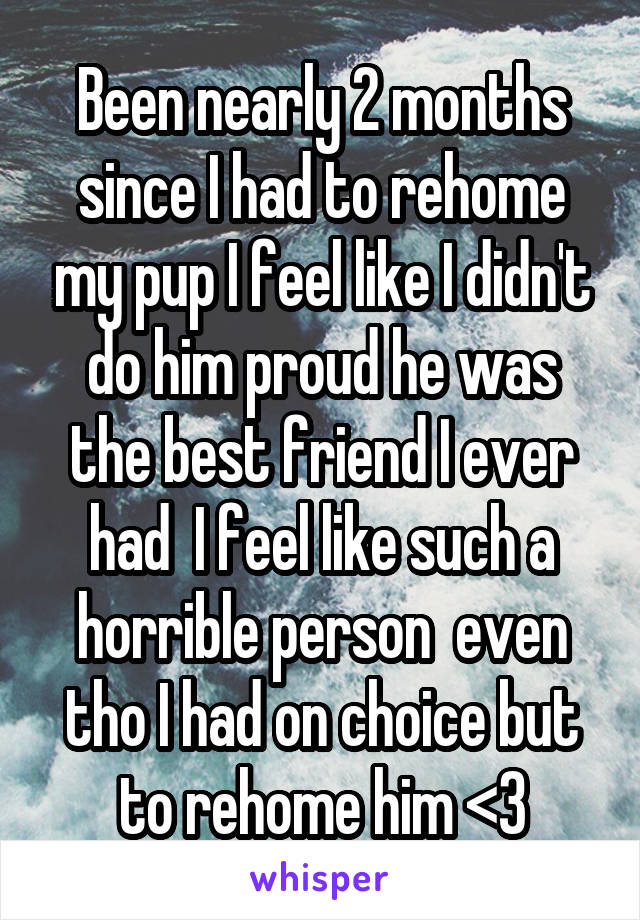 Been nearly 2 months since I had to rehome my pup I feel like I didn't do him proud he was the best friend I ever had  I feel like such a horrible person  even tho I had on choice but to rehome him <3