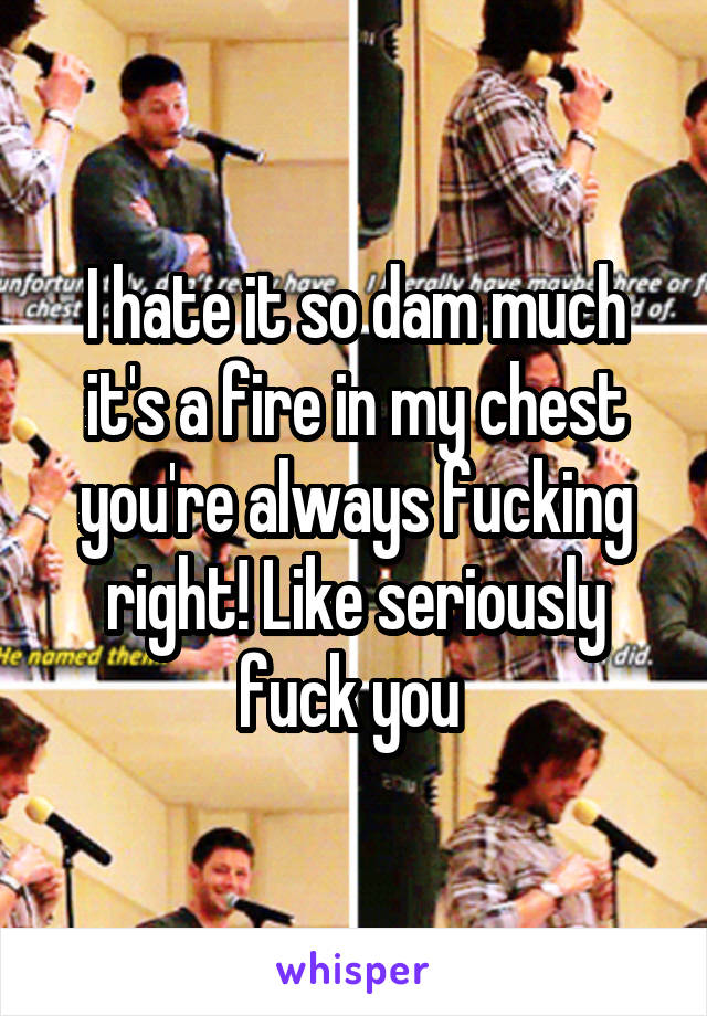 I hate it so dam much it's a fire in my chest you're always fucking right! Like seriously fuck you