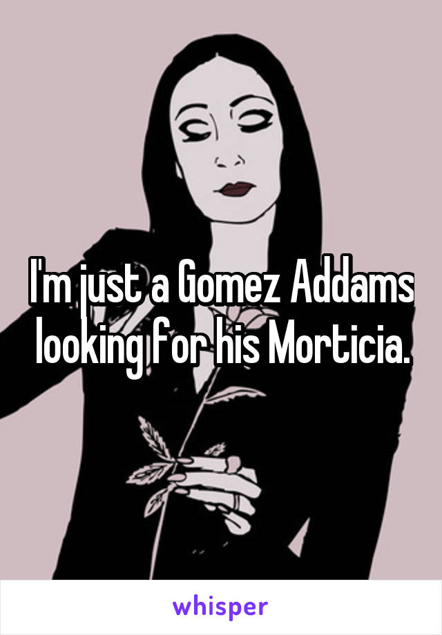 I'm just a Gomez Addams looking for his Morticia.