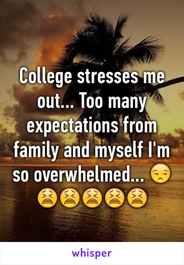 College stresses me out... Too many expectations from family and myself I'm so overwhelmed... 😒😫😫😫😫😫