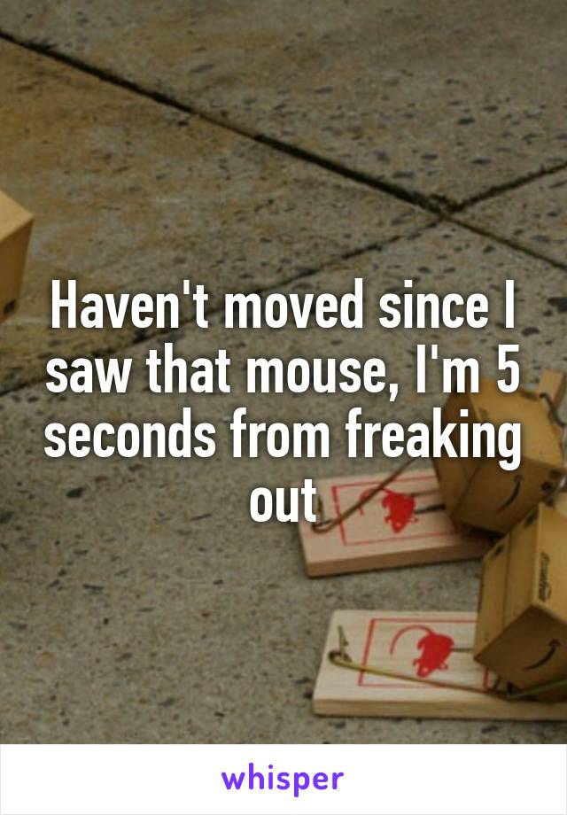 Haven't moved since I saw that mouse, I'm 5 seconds from freaking out