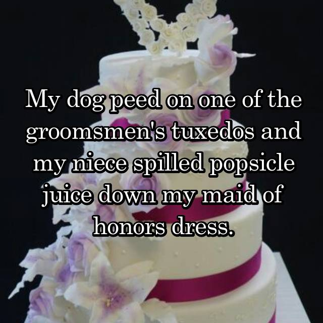 My dog peed on one of the groomsmen's tuxedos and my niece spilled popsicle juice down my maid of honors dress.