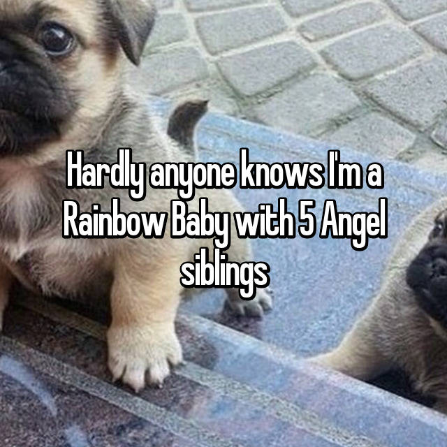 Hardly anyone knows I'm a Rainbow Baby with 5 Angel siblings 😢