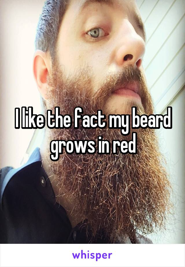 I like the fact my beard grows in red