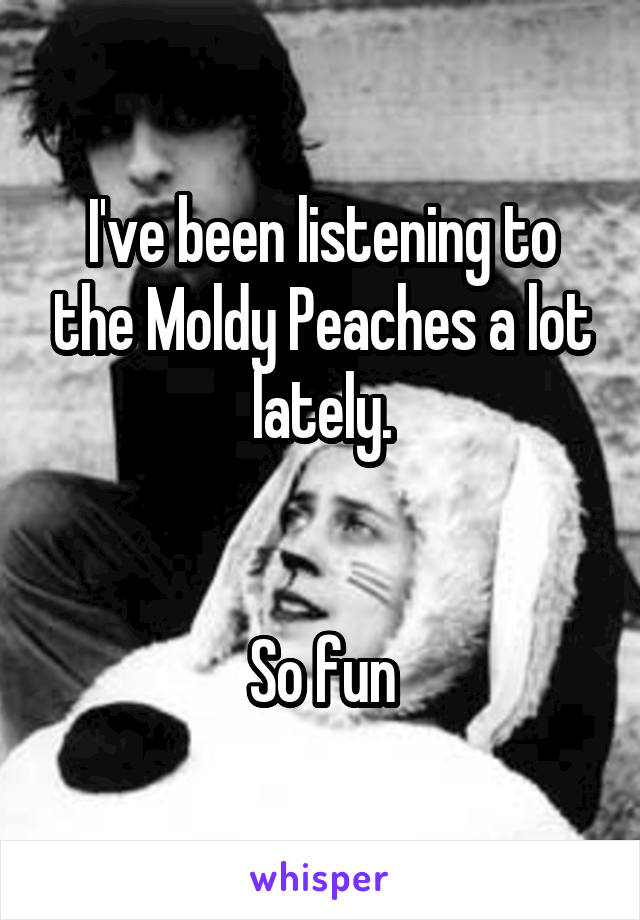 I've been listening to the Moldy Peaches a lot lately.   So fun