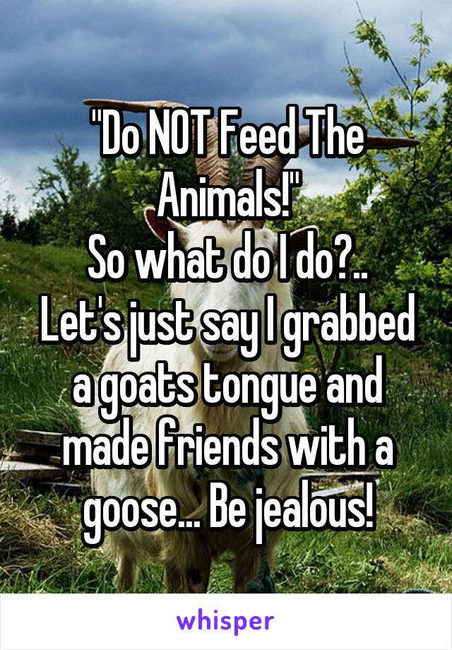 """""""Do NOT Feed The Animals!"""" So what do I do?.. Let's just say I grabbed a goats tongue and made friends with a goose... Be jealous!"""