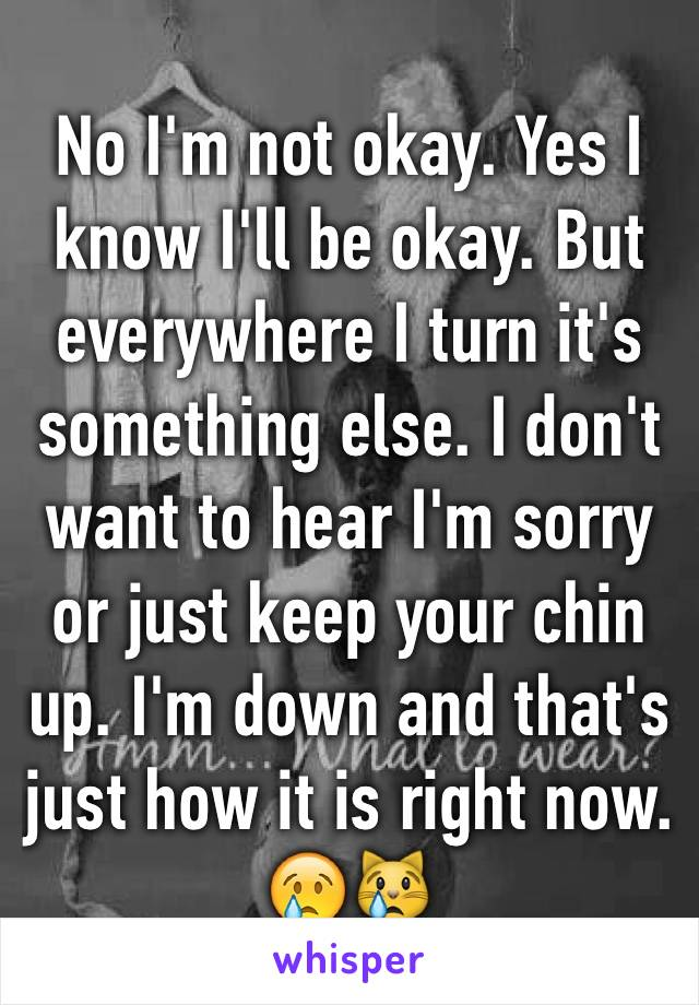 No I'm not okay. Yes I know I'll be okay. But everywhere I turn it's something else. I don't want to hear I'm sorry or just keep your chin up. I'm down and that's just how it is right now. 😢😿