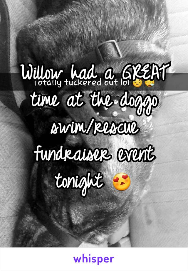 Willow had a GREAT time at the doggo swim/rescue fundraiser event tonight 😍