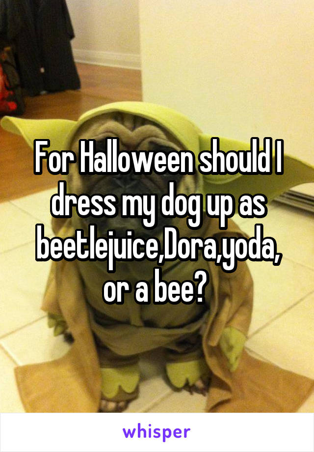 For Halloween should I dress my dog up as beetlejuice,Dora,yoda, or a bee?