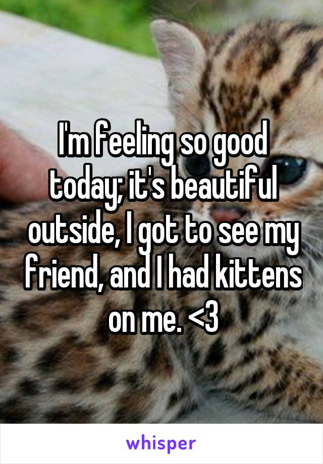 I'm feeling so good today; it's beautiful outside, I got to see my friend, and I had kittens on me. <3