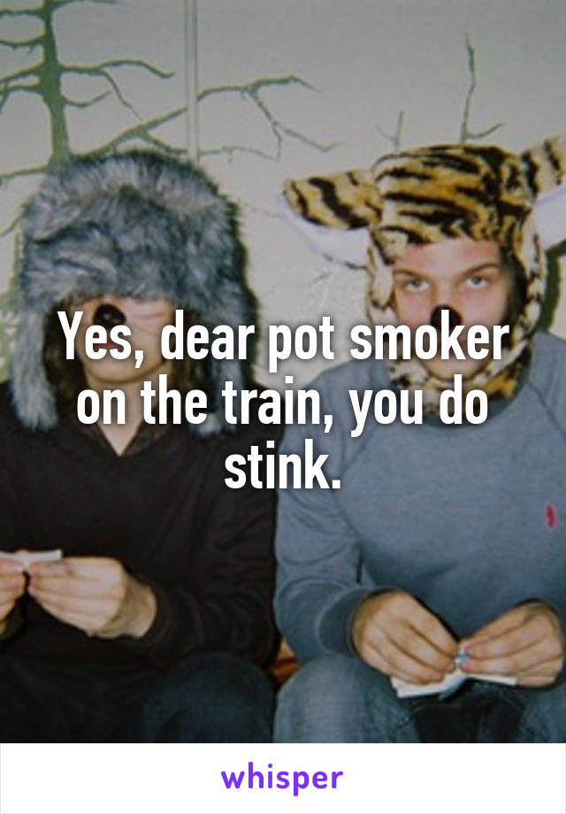 Yes, dear pot smoker on the train, you do stink.