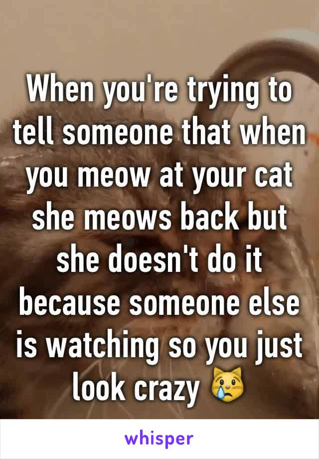 When you're trying to tell someone that when you meow at your cat she meows back but she doesn't do it because someone else is watching so you just look crazy 😿